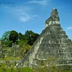 El Gran Jaguar, en Tikal - foto por Alberto Bolaños
