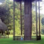 Maya quirigua monolito silvia sanchez 150x150 - Quiriguá, Izabal - Ciudad Maya