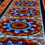 Galería – Fotos de las Tradicionales Alfombras de la Cuaresma y Semana Santa