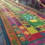 Alfombra de Viernes Santo en Chimaltenango foto por Joel S Yok 150x150 - Galería - Fotos de las Tradicionales Alfombras de la Cuaresma y Semana Santa
