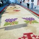 Alfombras de Semana Santa 6 foto por Catalino Ortega. 150x150 - Galería - Fotos de las Tradicionales Alfombras de la Cuaresma y Semana Santa