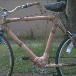 Bici -Bambu