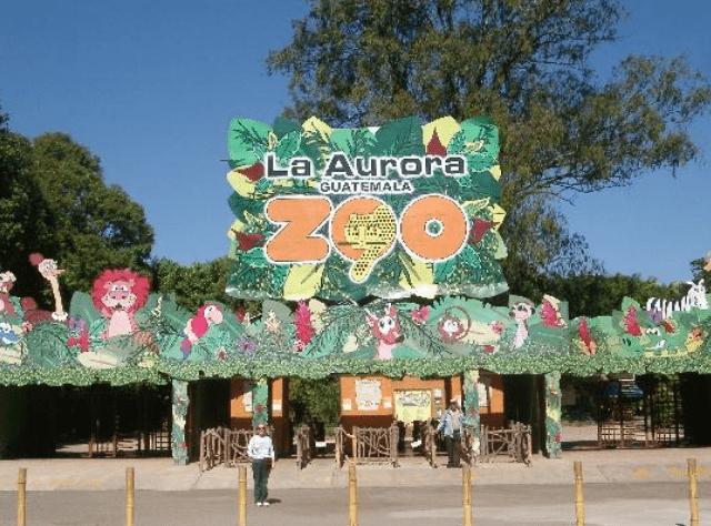 Zologico la Aurora estrada al parque foto por tripadviser - El Origen de la Finca Nacional La Aurora y el Hipódromo del Sur