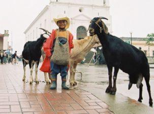 Chapincito con personalidad Santa Cruz del Quiché foto por Osorious Oso e1368731460384 303x225 - Galería - Fotos de Guatemala por Avelino Osorious