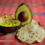 comida Aguacate y Guacamol foto por Neels Melendez de True Memories 150x150 - Galeria - Fotos de Guatemala por Neels Meléndez
