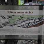 72 150x150 - Guía Turística - Aguateca, Petén