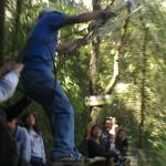 10 150x150 - Guía turística – Cerro Alux
