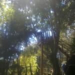 251120121386 150x150 - Guía turística – Cerro Alux