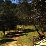 7 150x150 - Guía turística – Cerro Alux