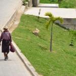 traje típico Carlos Villegas1 150x150 - Guía Turística - San Antonio Palopó