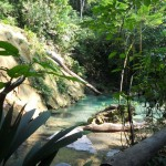 11 150x150 - Guía Turística - Las Escobas, Cerro San Gil, Izabal