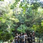 2 150x150 - Guía Turística - Las Escobas, Cerro San Gil, Izabal