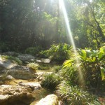 3 150x150 - Guía Turística - Las Escobas, Cerro San Gil, Izabal