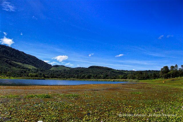 aguna del Pino, Santa Rosa - foto por Sandra Esteban
