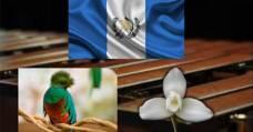 Video Musical – Guatemala Mía