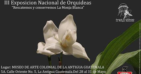 Evento – III Exposición Nacional de Orquideas