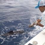 Cerca de sacarlo para la foto oficial 150x150 - Guía Turística - Pesca Deportiva en Guatemala