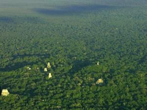 Tikal foto por Rony Veliz 300x225 - Guia Turística - Tikal, El Lugar de las Voces