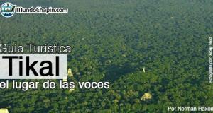 Guia Turística – Tikal, El Lugar de las Voces
