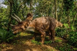 Dino Park Retalhuleu 5 foto por Hector Lopez 300x199 - Galeria - Fotos de Guatemala por Hector Lopez Cruz