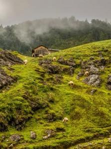 Huehuetenango foto por Hector Lopez 223x300 - Galeria - Fotos de Guatemala por Hector Lopez Cruz