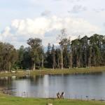 IMG 2279 150x150 - Guía Turística - Laguna de Lemoa, Quiché