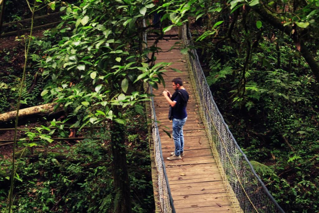 Puente Colgante Refugio del Quetzal, Fotografía Ana Lucía García