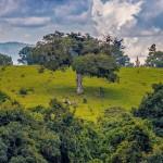 Vista en Guatemala foto por Carlos Lopez Ayerdi 150x150 - Galeria de Fotos de Guatemala por Carlos Lopez Ayerdi