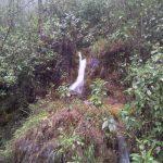Nacimiento de Rios 150x150 - Guía Turística -  Sendero Ecológico La Maceta