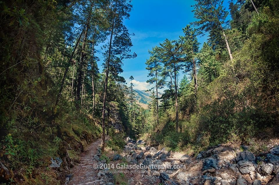 la maceta sendero ecologico foto por galasdeguatemala - Guía Turística -  Sendero Ecológico La Maceta