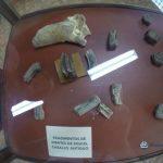 """los caballos estuvieron antes de los espan cc 83oles en guatemala 150x150 - Guía Turística - Sitio Paleontológico """"El Mamut"""""""