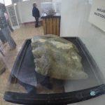 """podemos comparar el taman cc 83o del molar con el de las personas 150x150 - Guía Turística - Sitio Paleontológico """"El Mamut"""""""