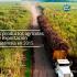 Principales productos agrícolas de exportación de Guatemala en 2015