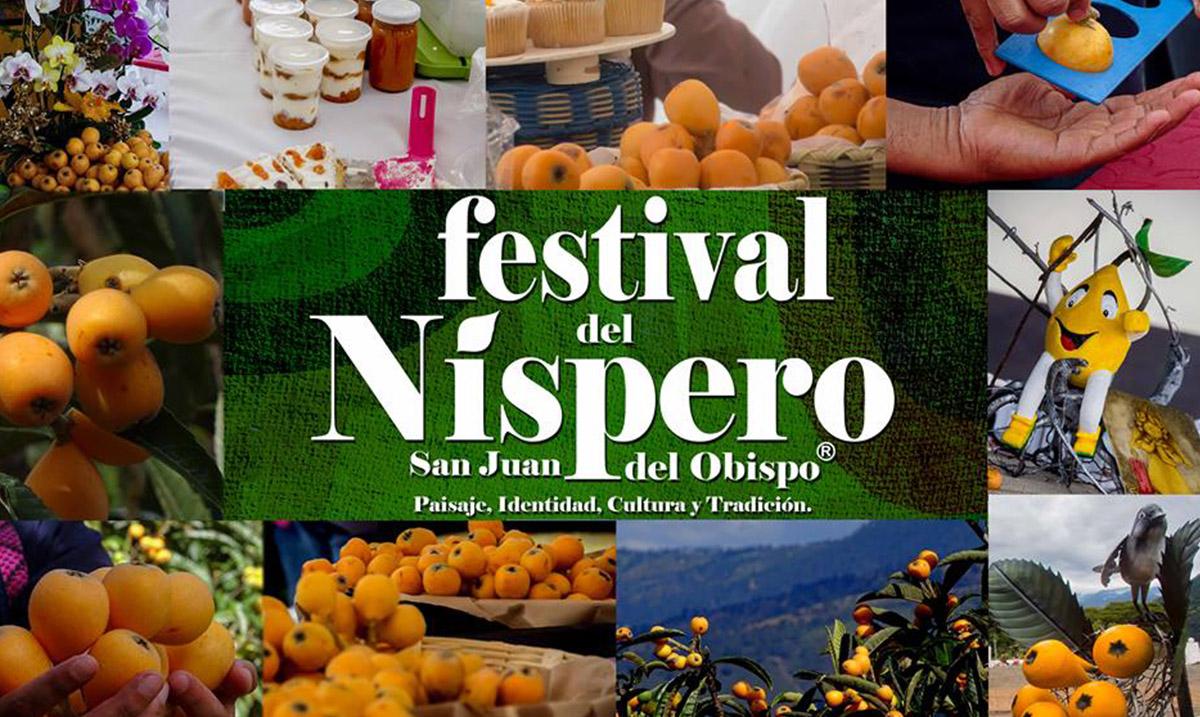 Festival del Níspero