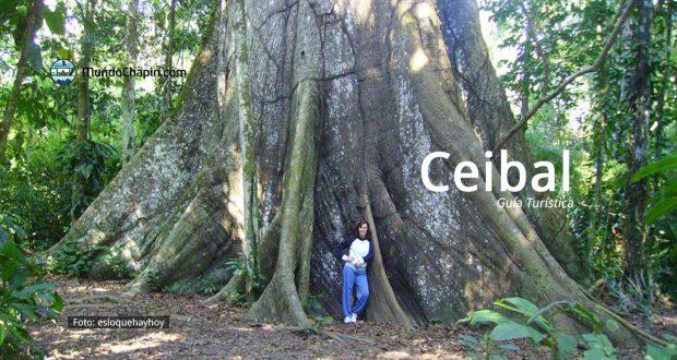 Guía Turística a El Ceibal