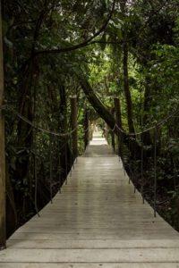 hacienda tijax 1 200x300 - Guía Turística a Hacienda Tijax