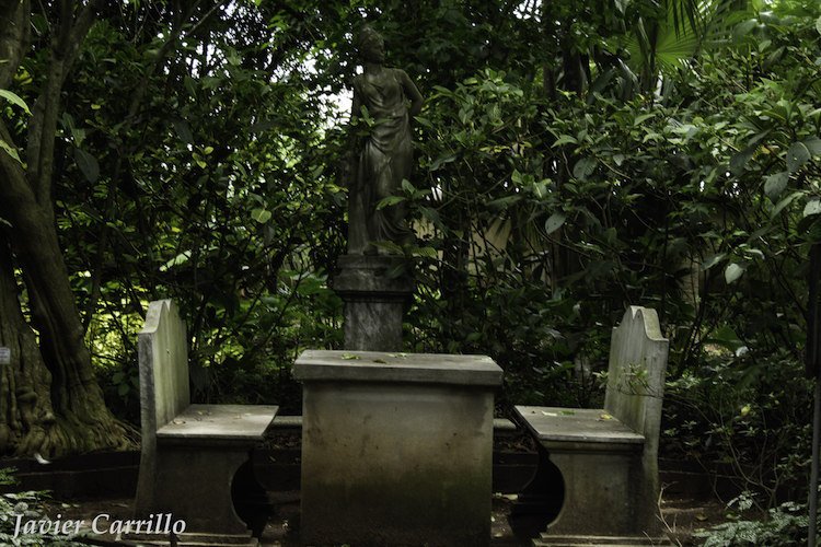 mg 5586 - Jardín Botánico de Guatemala