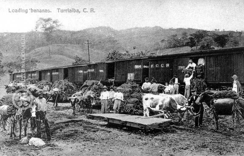 21 - La  United Fruit Company  su historia en Guatemala