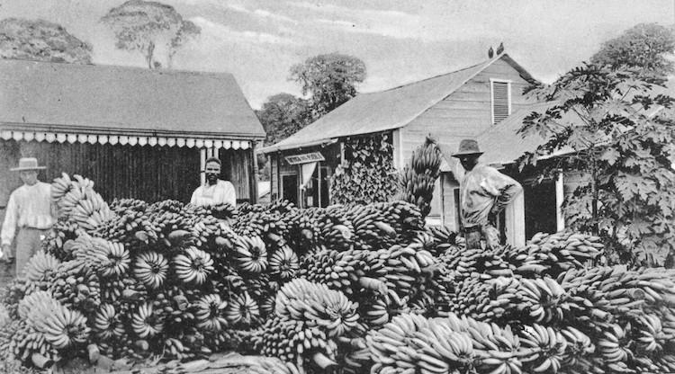 b1 - La  United Fruit Company  su historia en Guatemala
