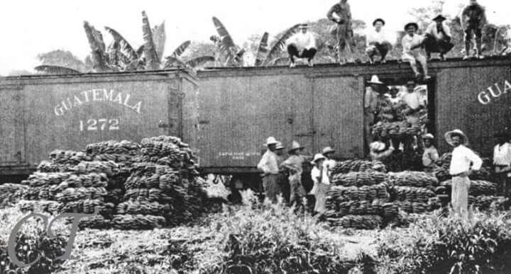 d6bf1b000c458ebef4ce9ffa3ae7ff4f - La  United Fruit Company  su historia en Guatemala