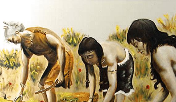 agricultura mesoamericana - Cronología de la cultura Maya
