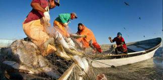 tipos de pesca 324x160 - Mundo Chapin