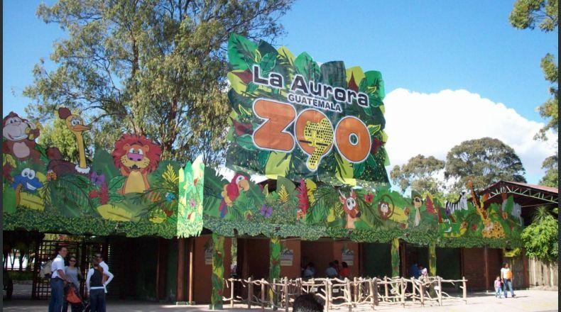 aurora crop1550168061967 jpg 525981578 - 4 zoológicos en Guatemala